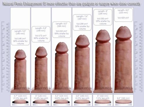 zaburzenie erekcji